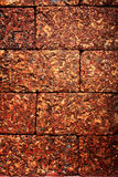 Laterite-Block im Garten Lizenzfreie Stockbilder