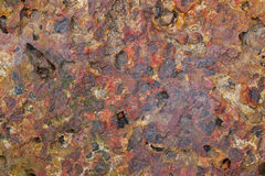 Laterite brick stone in rusty red color Stock Image
