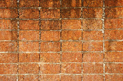 Laterite brick wall. As background Stock Image