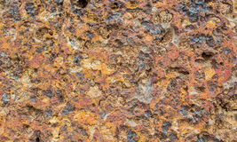 Laterite Stock Photography