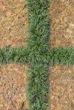 Laterite och gräsplanblad Royaltyfria Bilder