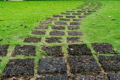 Laterite Pathway in the park Stock Images