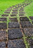 Laterite Pathway in the park Royalty Free Stock Photography