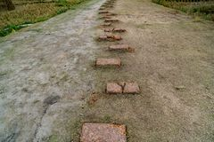 Laterite Pathway in the park Royalty Free Stock Image