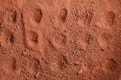 Laterite soil scene. Stock Image