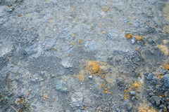 Laterite soil Royalty Free Stock Photo