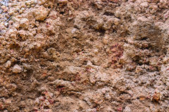 Laterite soil. Mean soil found dirt floor. Top layer of gravel, rock fragments And rock ground level shallower than 50 cm from the ground Royalty Free Stock Image