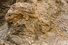 Laterite soil. Mean soil found dirt floor. Top layer of gravel, rock fragments And rock ground level shallower than 50 cm from the ground Royalty Free Stock Photo