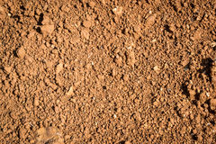 Laterite soil. Is not suited to the crop due to lower soil less. Low nutrient Suitable for the construction Stock Photography