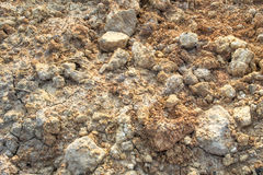 Laterite soil Royalty Free Stock Images
