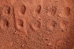 Laterite soil scene. Stock Photos