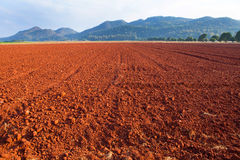 Laterite Soil texture. Red gravel floor background texture royalty free stock photography