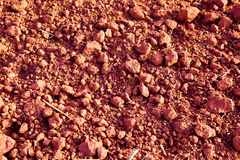 Laterite Soil texture Royalty Free Stock Photo