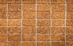 Laterite Steenmuur Stock Afbeeldingen