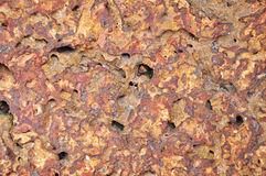 Laterite stone Royalty Free Stock Images