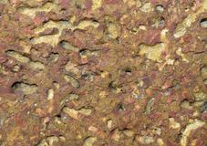 Laterite stone. Or mother nest is a natural material. Looks like a red, orange or dark brown stone. Common porous It is an important building material in the Stock Images