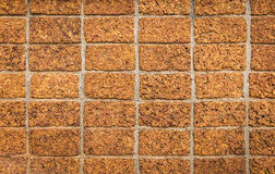 Laterite Stone wall Stock Images
