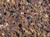 Laterite Royalty Free Stock Photo