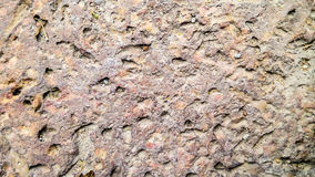 Laterite texture Stock Photography