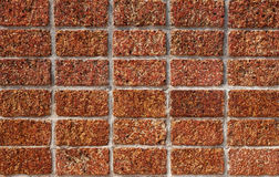 Laterite wall. Background of laterite stone wall Stock Photography