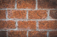 Laterite wall. Background of laterite stone wall Stock Photos