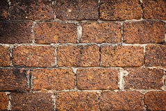 Laterite wall background Stock Image
