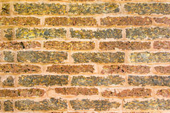 Laterite wall Stock Photo