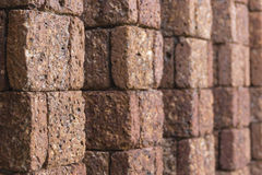 Laterite wall Stock Photography