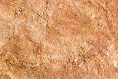 Lateritic soil cross section Stock Photo