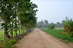 Lateritic soil road at countryside morning time Stock Images