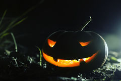 Laterne Halloween Jacks O Stockfotografie