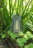 Laterne im Garten Stockbilder