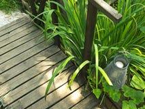 Laterne im Garten Lizenzfreies Stockfoto