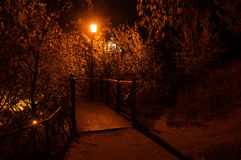 Laterne im Nachtpark Stockbilder