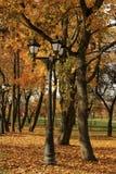 Laterne im Park bedeckt mit gelben Blättern Lizenzfreies Stockbild