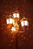 Laterne im Park im Winter Stockfoto