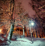 Laterne im Park nachts Stockbilder