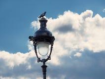 Laterne in Paris Stockbild
