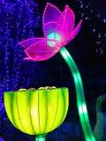 Laternen-Festival in Zigongï-¼ Œ China Lizenzfreies Stockfoto