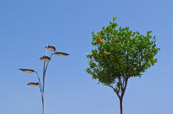Laternen- und Mandarinenbaum Lizenzfreies Stockfoto