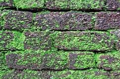 Laterytu Brickwork Kamienny tło Zdjęcia Royalty Free