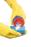 Latex Glove and Sponge Royalty Free Stock Photography