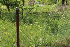 Lath ogrodzenie zdjęcie stock