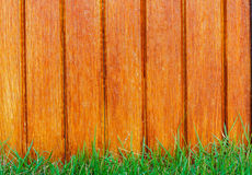 Lath wooden fence and green grass Stock Photo
