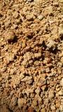 lathalitic почва постепенно стоковое изображение