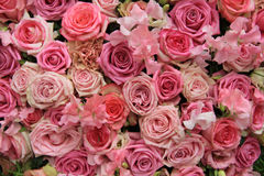 Lathyrus and roses in a wedding bouquet. Lathyrus and roses in a pink wedding arrangement Stock Photography