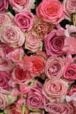 Lathyrus and roses in a wedding bouquet. Lathyrus and roses in a pink wedding arrangement Royalty Free Stock Photos