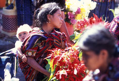 LATIJNS AMERIKA GUATEMALA CHICHI Stock Afbeelding