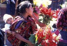 LATIJNS AMERIKA GUATEMALA CHICHI Royalty-vrije Stock Foto's