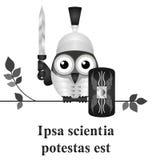 Latijnse kennis Stock Afbeelding